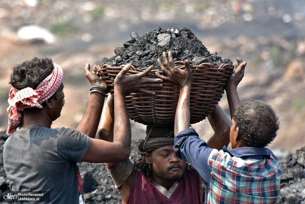 حمل زغال سنگ با سبد