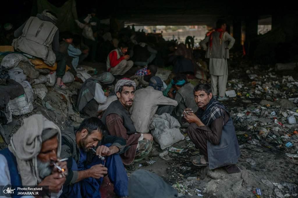 عکس/ تجمع مصرف کنندگان مواد مخدر زیر پلی در کابل