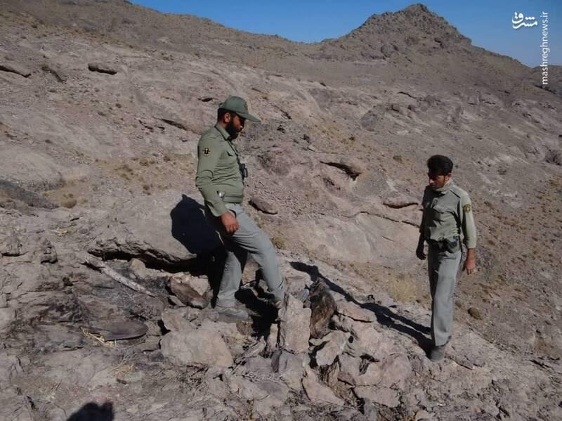 عکس/ تخریب کمینگاه شکارچیان غیرمجاز در منطقه شکار ممنوع