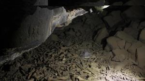 4 گوشه دنیا/ کشف استخوان انسان در عربستان