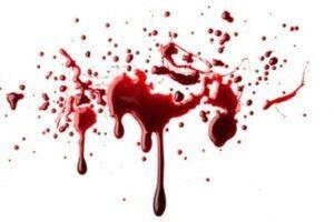 قتل مرد باغدار در بروجرد
