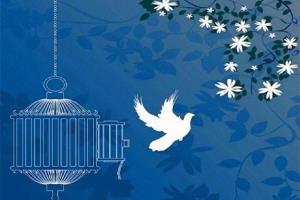 آزادی ۱۴۸ زندانی با تلاش شورای حل اختلاف هرمزگان
