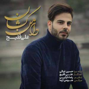 آهنگ جدید / «دامن کشان» با صدای علی قلیچ