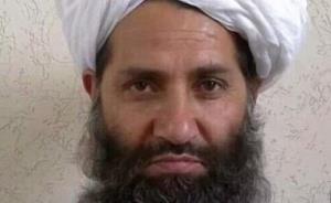 راز غیبت بدون دلیل سرکرده طالبان و ملا برادر
