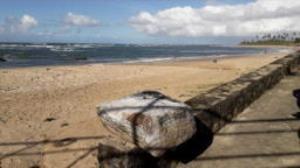 4 گوشه دنیا/ ماجرای کشف جعبه های مرموز در سواحل برزیل