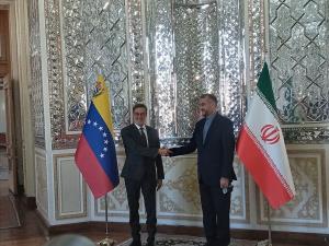 وزیر خارجه ونزوئلا با امیرعبداللهیان دیدار کرد