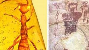 گوناگون/ حقایقی درباره مردمان مورچهای؛ باور عجیب تمدنهای باستانی!