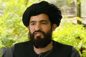استقبال طالبان از استعفای زلمای خلیلزاد