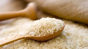برنج ارزان میشود؟