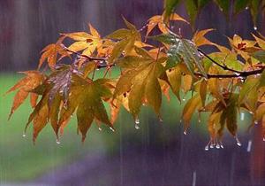 مازندران از فردا بارانی و سرد میشود