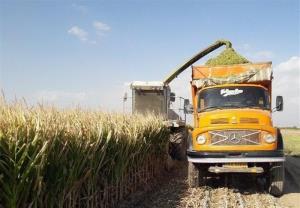 کمبود ماشین آلات؛ دسترنج کشاورزان