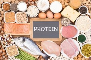 پروتئین رابط اصلی میان سرکوب اشتها و چاقی است