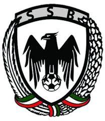 قرارداد ۱۲ بازیکن جدید با شاهین بوشهر