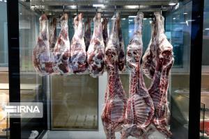 مدیر جهاد کشاورزی: بیشاز ١۴ هزار تن شیر و گوشت قرمز سالانه در خاش تولید میشود