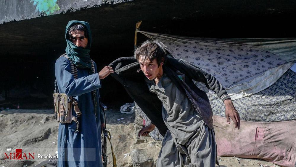 عکس/ دستگیری معتادان توسط طالبان