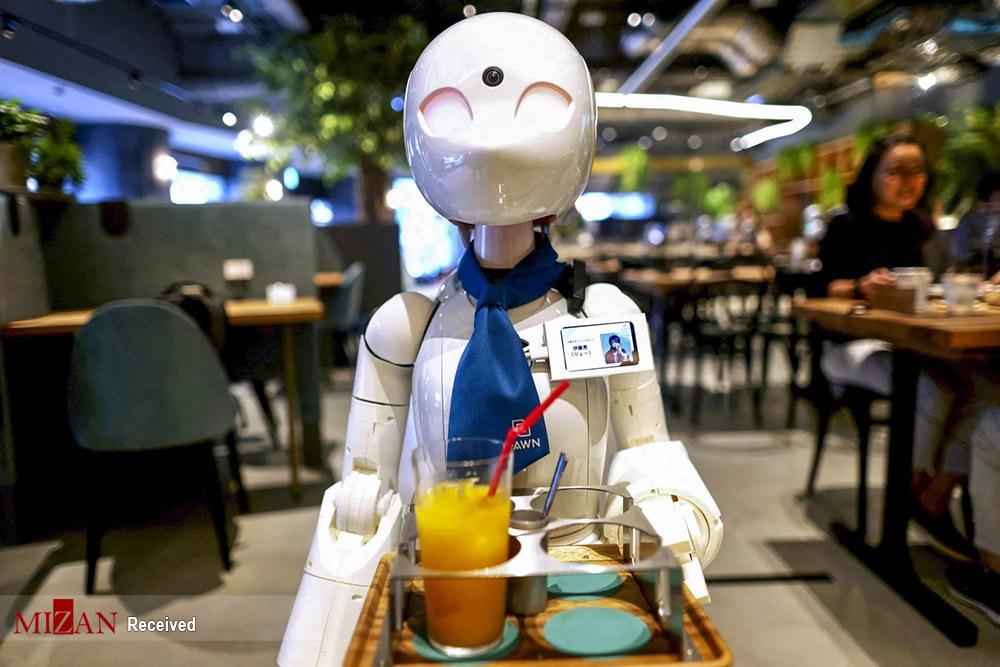 کافه ربات در توکیو