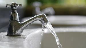 واکنش شرکت آبفای کشور به وجود نوعی انگل در منابع آب