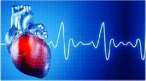 تفاوت زنان و مردان در بیماریهای قلبی قبل از تولد شروع میشود