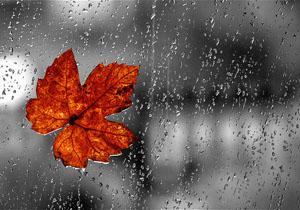 کاهش دما و بارش برف و باران در اردبیل