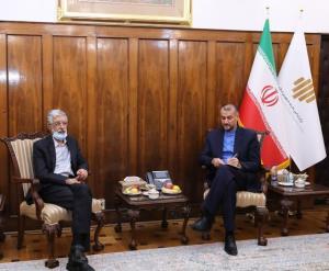 دیدار امیرعبداللهیان و حدادعادل برای توسعه زبان فارسی در خارج از ایران