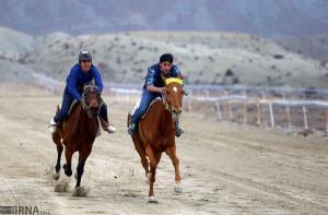 نخستین دوره مسابقات اسبدوانی کورس پاییزه در خراسان شمالی آغاز شد
