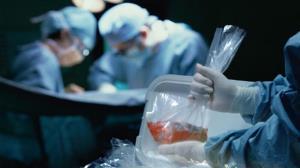 کودک مرگ مغزی نیشابوری به ۵ بیمار زندگی دوباره بخشید