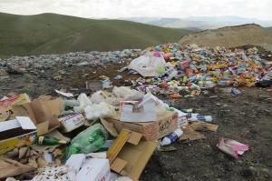 بیش از ۳ تن مواد غذایی فاسد در سنندج معدوم شد
