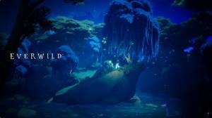 ایکسباکس عجلهای برای نمایش بیشتر Everwild ندارد