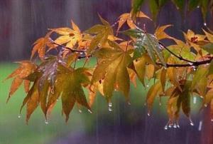 آغاز بارشهای پاییزی در اصفهان از نیمه دوم آبان