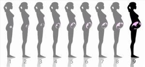 اینفوگرافی/ تغییراتی که ممکن است در اوایل بارداری تجربه کنید