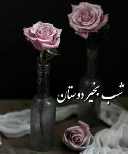سلام و شبخیر عزیزان🌹