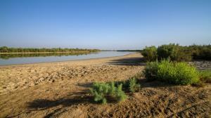 مدیرکل حفاظت محیط زیست: تالابهای بوشهر پایش میشوند