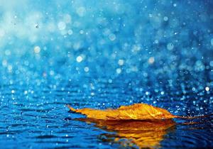 ثبت بیشترین میزان بارش باران در سرخرود