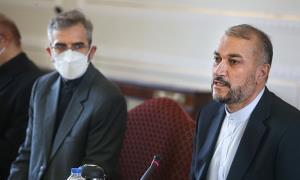 چرا دولت نمی گوید دلیل معطل گذاشتن مذاکرات وین چیست؟