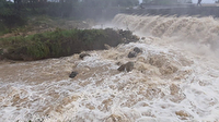 جاری شدن سیلاب در رودخانه شمرود شهرستان سیاهکل