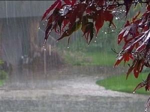استقبال از آبان با بارش دل انگیز باران بجنورد