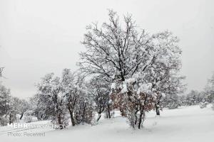اولین برف پاییزی ارتفاعات مازندران را سفیدپوش کرد