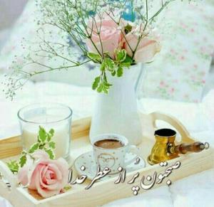صبح زیبای براتون آرزو دارم 🌹