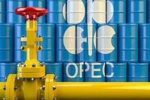 قیمت نفت سنگین ایران و اعضای اوپک افزایش یافت
