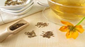 گیاهی که درمان دردهای گوارشی تان میشود