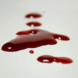 قتل هولناک در ایلام؛ اختلافات رنگ خون گرفت