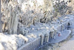 هشدار خطر یخزدگی محصولات کشاورزی در سیستانوبلوچستان