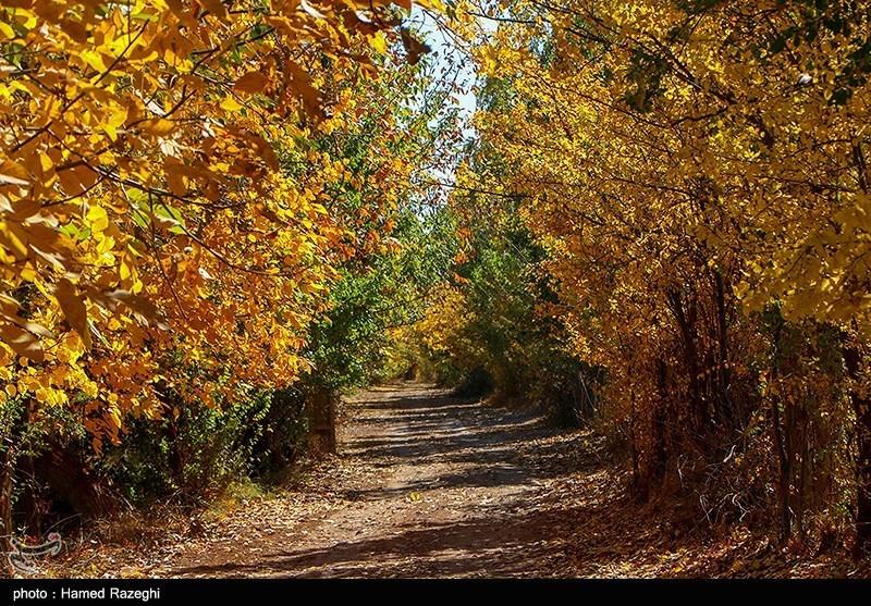 پاییز دیدنی ابهر در زنجان