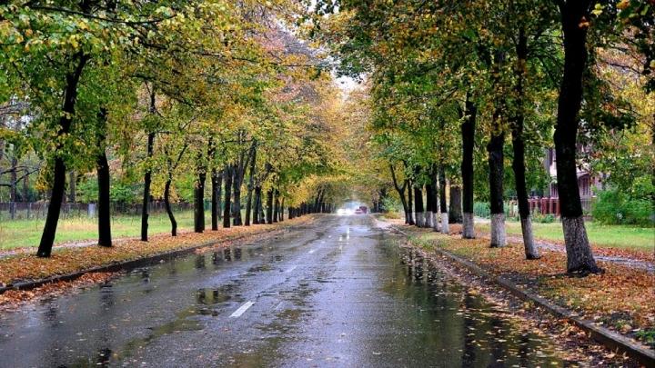 بارش باران در گیلان، از عصر فردا