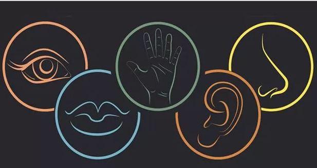 کشف ۳ حس جدید در بدن ، حواس انسان ۸ گانه است