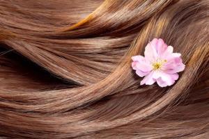 این چهار ماده غذایی به زیبایی مو کمک می کند