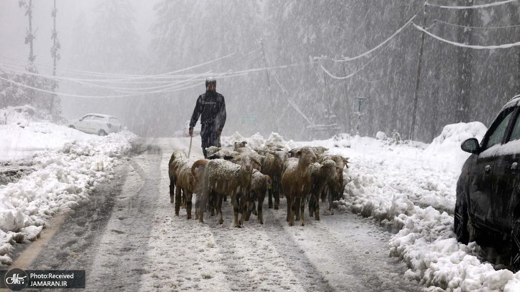 برف و سرمای بی سابقه در کشمیر