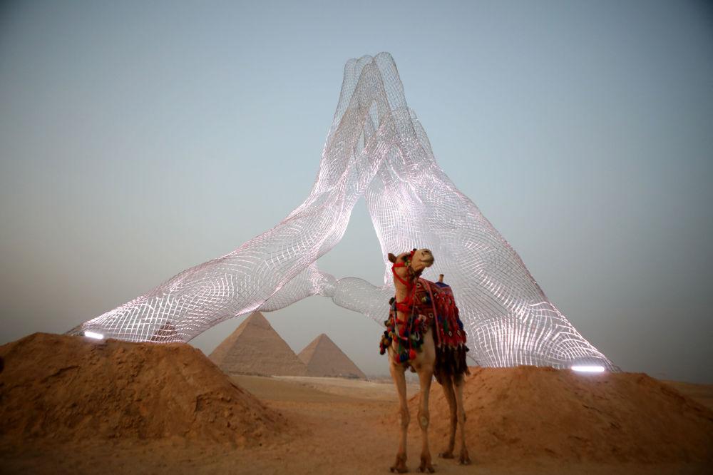 برگزاری نمایشگاه هنری در کنار اهرام مصر