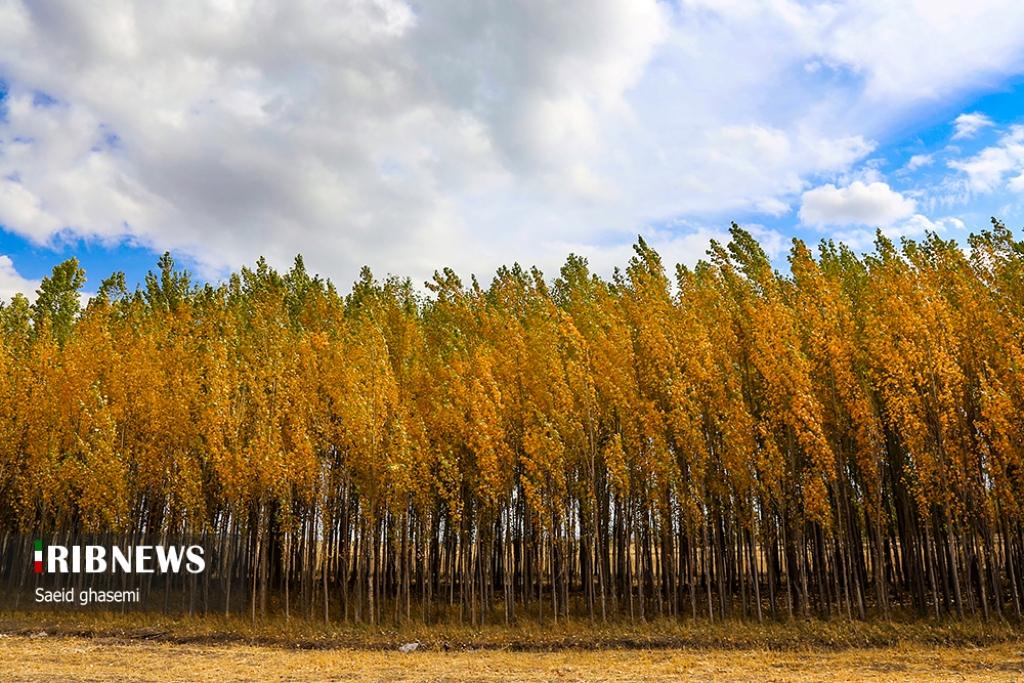 پاییز هزار رنگ ارسباران