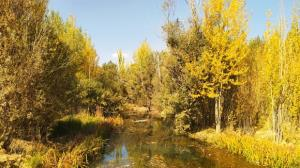 تصاویری از طبیعت پاییزی در روستای ده چشمه
